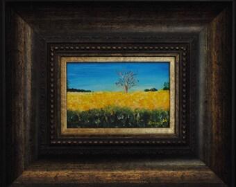 Canola Fields Oil on Canvas - OP 401