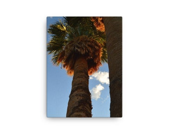 Two Palm Trees on Canvas