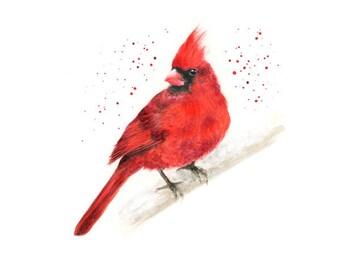 cardinal bird, cardinal art, cardinal decor, bird print, winter prints, bird art, red art print, red bird, remembrance gifts, bird painting
