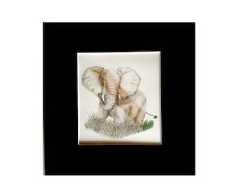 Bull Elephant colour glimpse