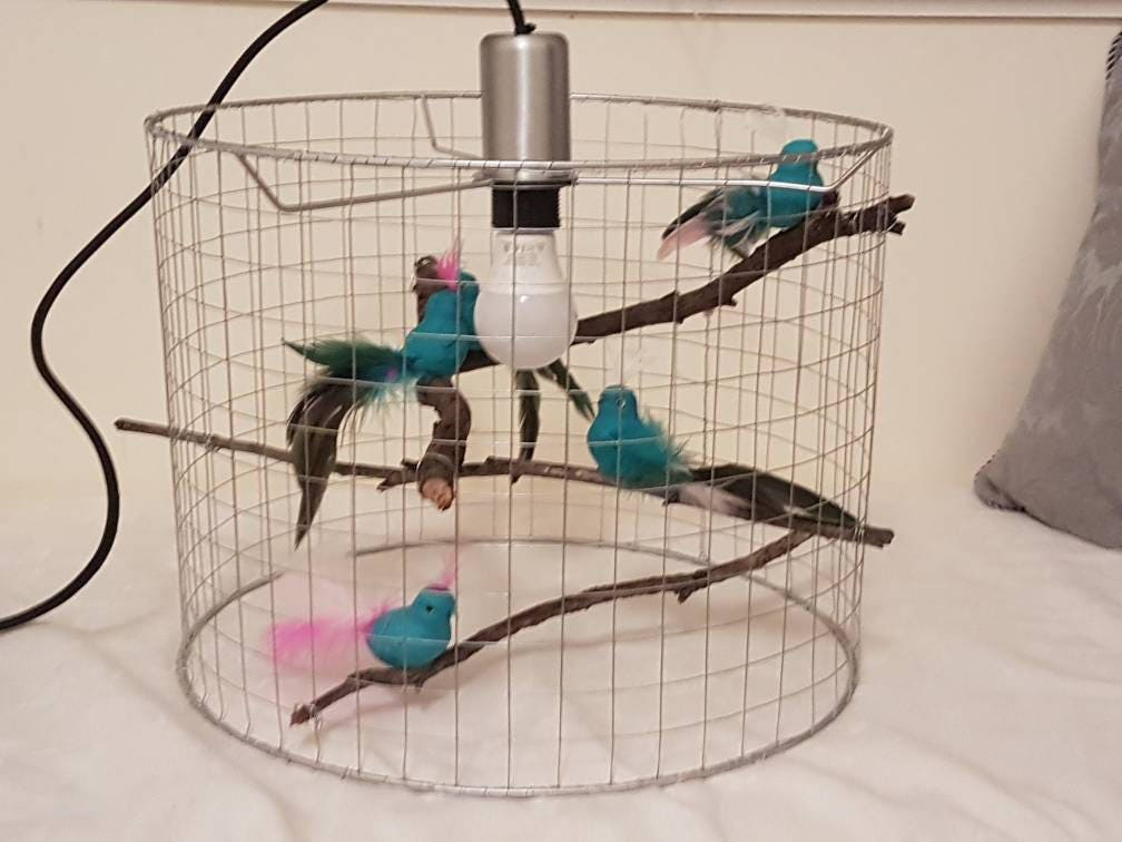 Fantastic Custom Birdcage Pendant Light, Unique Chandelier Custom Light  XE04