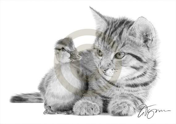 Gatto e anatroccolo matita disegno opera di formato a4 for Disegni a matita di cani