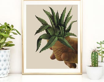 Cactus Print,  Cactus Poster, Cactus Photography, Cactus Wall Art, Cactus Print, Succulent Print, Cactus Decor, Cactus Art