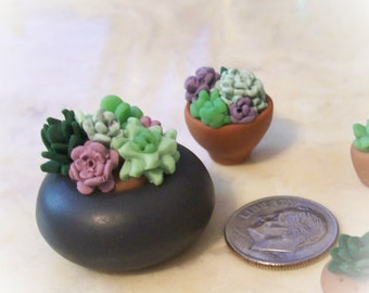 Miniature Succulents in Black Vintage Button Planter 1:12 Scale One-of-a-Kind Tiny Artisan Sculpted Home and Garden Decor