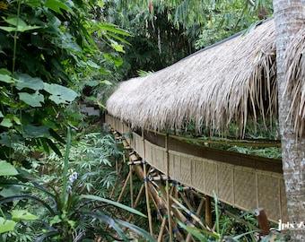 Bamboo House -Bali - Green Village - Fine Art Photography Modern Wall Art in Various Sizes 8x10, 8x12, 11x14, 12x18, 16x20, 16x24