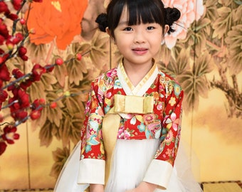 Hanbok for baby giri Korean Traditional Wedding Dress