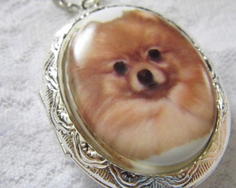 Pomeranian Porcelain Cabochon Cameo Locket - SIlver or gold locket - Christmas gift - Dog lover rescue