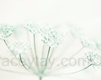 Pastel Flower Photography, Mint Green, White, Cream, Pale Bedroom Wall Art