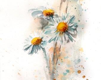 Daisies ORIGINAL Watercolor Painting, Daisy flowers botanical watercolour painting