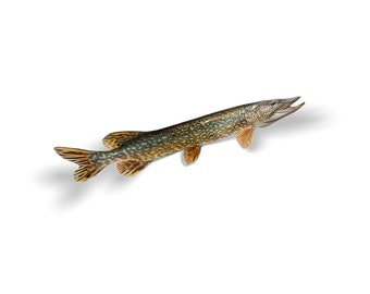 Northern Pike Decal, Northern Pike Sticker, Northern Pike