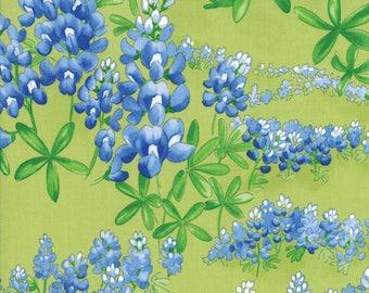 Moda Wildflowers VIII Quilt Fabric 1/2 Yard Grass 33223 13