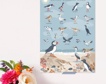 British Coastal Birds Poster - Nature Print - Wildlife Art - Nature Guide - Coast Print - Coastal Birds Wall Art  - For Her