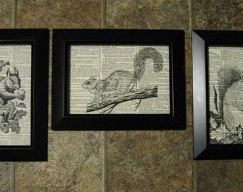 "Three Squirrel Vintage Dictionary Page Prints - 5"" x 7"""