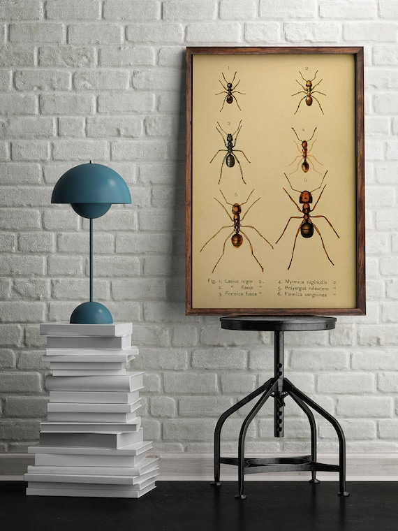 Outstanding Science Wall Decor Adornment - Wall Art Design ...