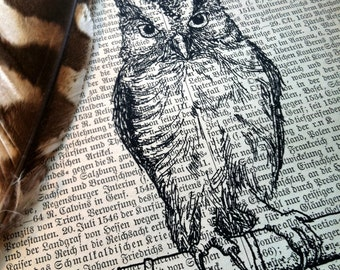 Owl On The Bookpile Art Print on Antique 1896 Dictionary Book Page