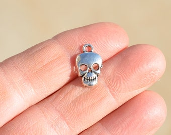 12  Silver Skull Charms SC1741