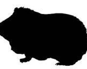 Custom Design Guinea Pig Miniature Model -  MiniPigsGuineaPig
