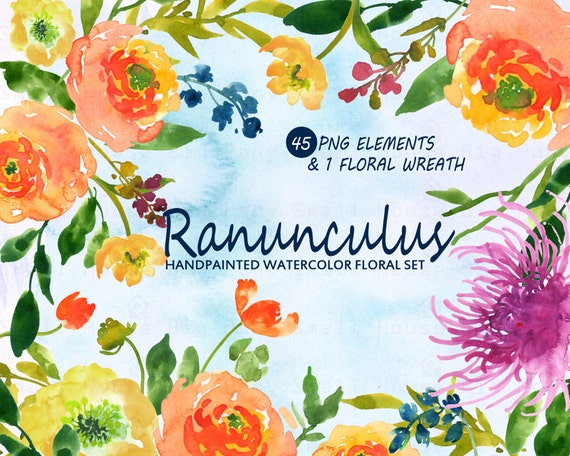 Watercolour Floral Clipart. Handmade, watercolour clipart, wedding diy elements, Roses - Ranunculus