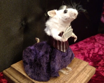 Poker face fancy taxidermy Mouse