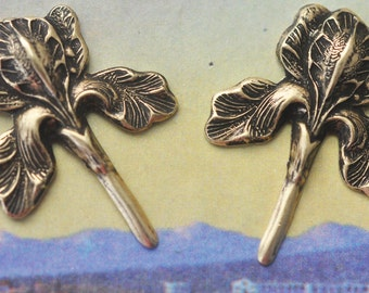 TWO Iris Brass Stampings, Brass Ox, Jewelry Supplies Made in the USA