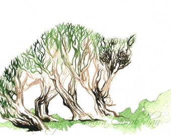 TreeRaccoon 5x7 Giclee Print