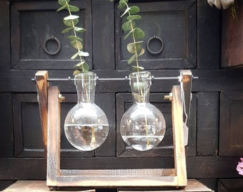 SINGLE STEM VASES: Science lab styled hydroponic vases for displaying single stem flowers. Single or Double stem vases available.