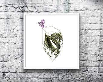 Insect Art Print- Mantis