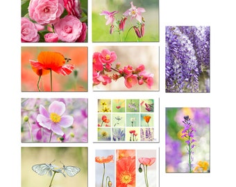 Photo cards flowers cards set 10 flowers, green cards, plant inks, flowers, flowers photo cards organics photos