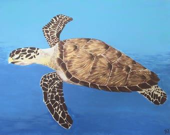 Hawksbill Sea Turtle print