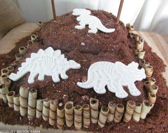 "4"" Dinosaur Fossil, Paleontologist, Cake Topper Set"