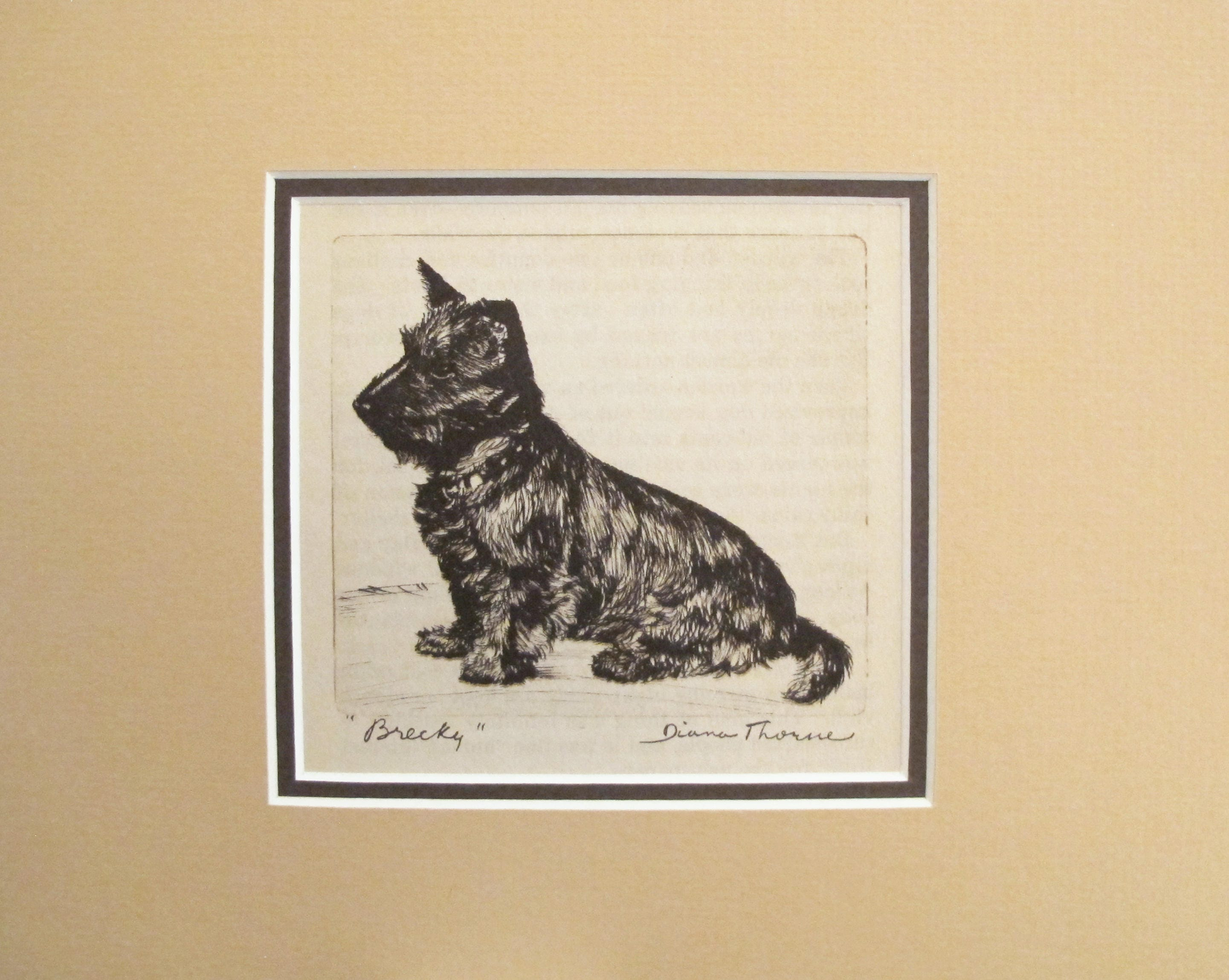 1936 Matted Dog Print Diana Thorne Brecky