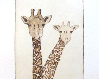 two giraffes - original etching and aquatint.