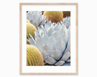 "Cactus Print, Cactus Decor, Large Wall Art, Boho Wall Art Print, Southwestern Decor, Nature Print, Wall Decor, Home Decor ""Cactus Garden #7"""