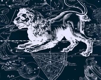 Zodiac horoscope, Constellation, Star map, 102