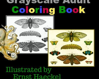PDF of Science & Nature Grayscale Adult Coloring Book Illustrator Ernst Haeckel Compiled by Renee Davenport