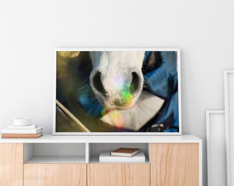 Horse Wall Art Poster Home Decor: Equine Flare