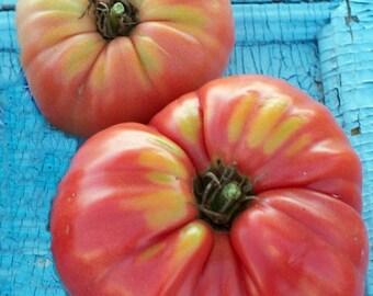 Limbaugh's Legacy Tomato Heirloom Garden Seed Non-GMO Rare Naturally Grown Open Pollinated 30+ seeds Gardening
