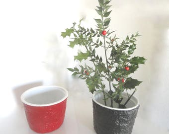 tidy, planter, pot for small Christmas tree and Evergreen branch