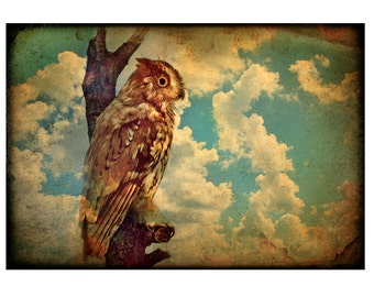 11X14 Owl, stormy, clouds, sepia, rustic, mint, teal, brown, bird, bird lover, other sizes also