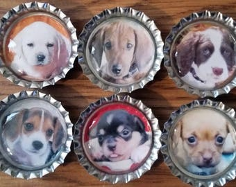 Six Adorable Puppies on Silver Bottle Cap Magnets