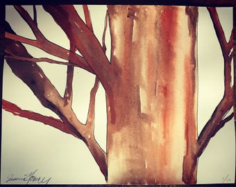 Tree, illustration, drawing, watercolor on fine paper, printed