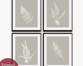 Ferns Garden Botanical Prints (Series D) Set of 4 - Art Prints (Featured in Stone) Nature Inspired Wall Decor