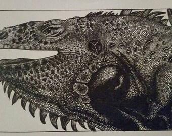 Pen and ink Lizard 8.5x11