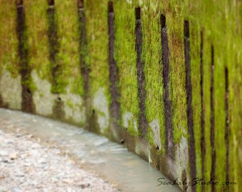 Wall of Tears : surreal photography moss water decay rustic haunted fortress castle moat stone green home decor 8x10 11x14 16x20 20x24 24x30