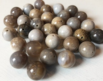 12mm Dendritic Fossil Ocean Agate Smooth Round Beads