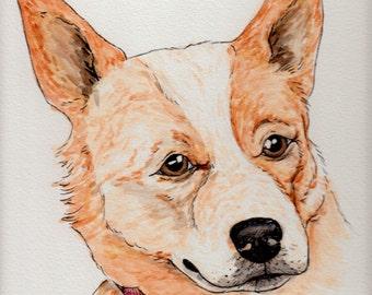 Original Queensland Heeler Watercolor Painting Portrait (9x12): Gift for Cattle Dog Lover