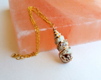 Mermaid sea shell necklace- conch (shell necklace, conch, gold trimmed shell, sea shell)