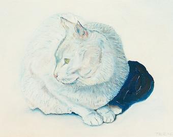 White Cat - Giclee Print