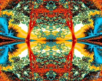 07339 Version 2 Fine Art Abstract Photography, Kaleidoscopic Trees