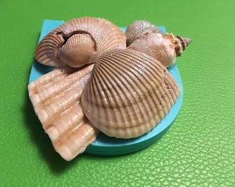 Mermaid Mirror - compact shell mirror